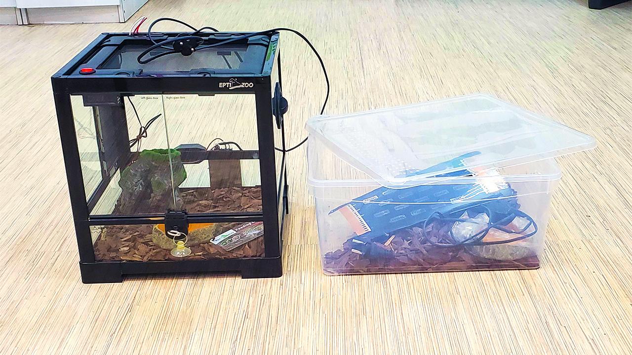 Террариум для гекконов-эублефаров